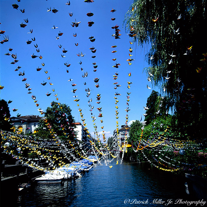 Zurich canal covered with origami birds over the water