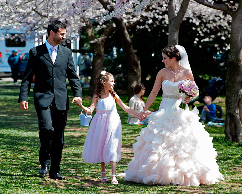 Cherry Blossoms in full bloom during one of many Wedding events in Washington, DC