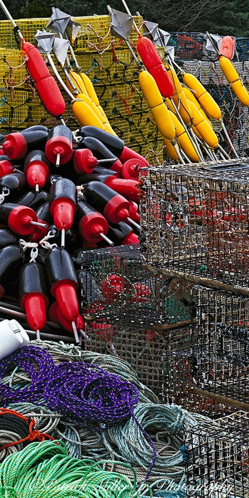 Colorful lobster buoys and ropes with cages in Maine