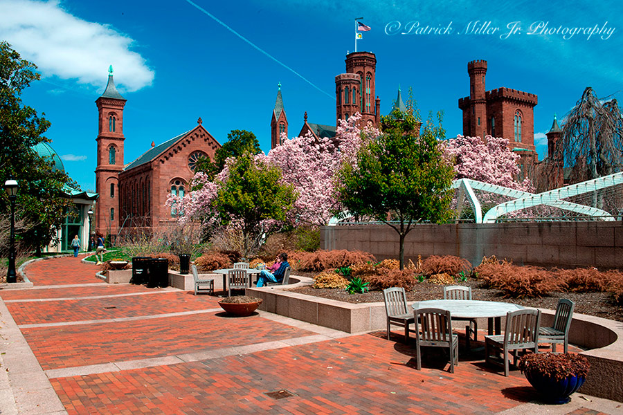 """Smithsonian Institution's Arts and Industries Building """"Castle"""" Courtyard during the spring bloom Washington DC"""